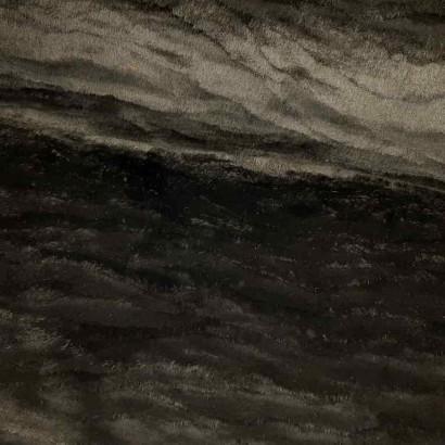 Tela de pelo negro lomo