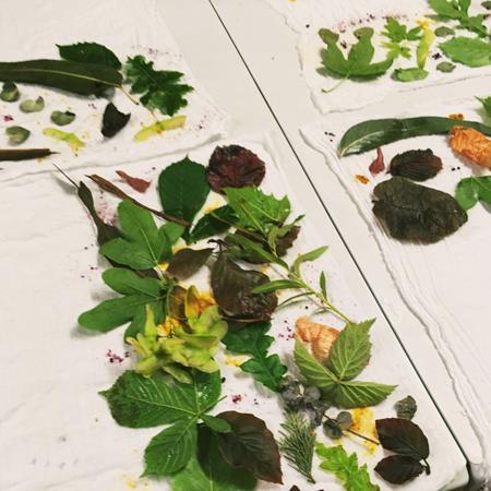 Colocacion de plantas estampación botánica