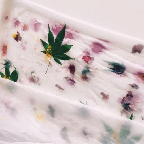 Estampacion botánica lantas y flores