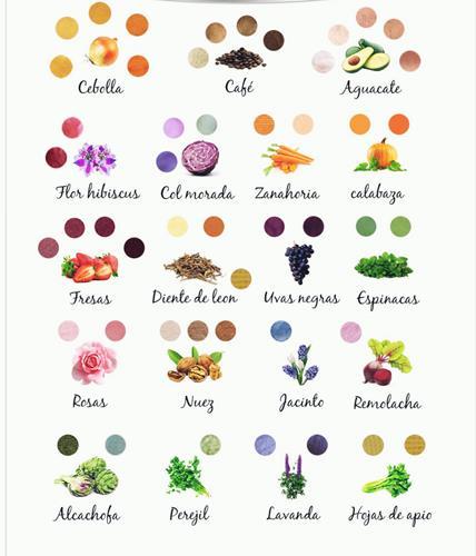 Tintes naturales de plantas y flores